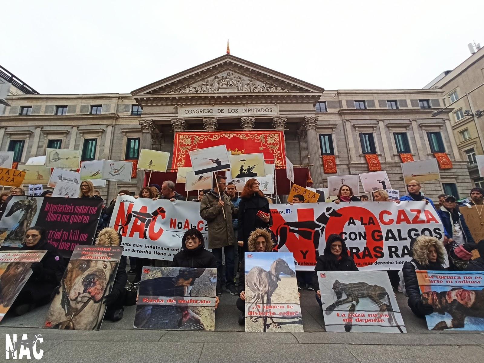 VÍDEO Manifestación No A La Caza 2020