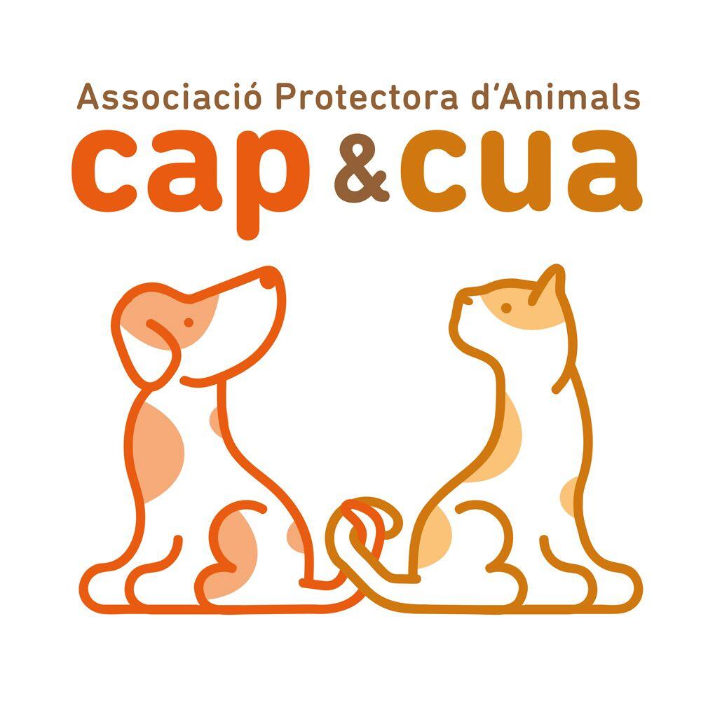Logo-CC-Nuevo-