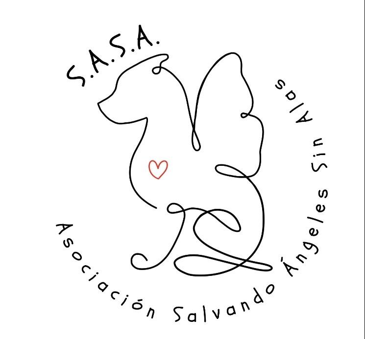 SALVANDO ANGELES SIN ALAS - MADRID - LOGO