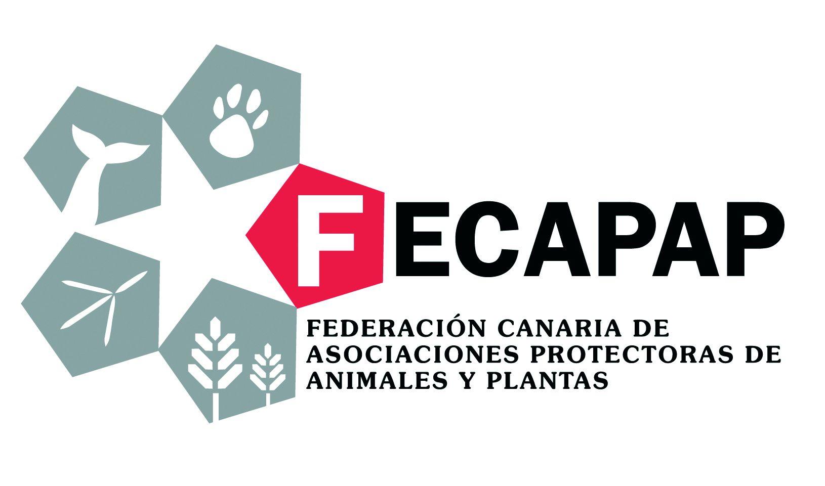logo-FECAPAP-1